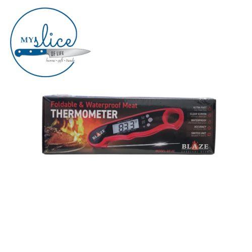 Blaze Thermometer Pen (2)